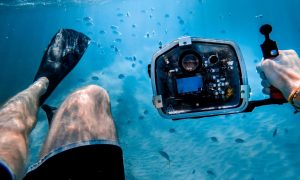 Basic underwater photography camera settings